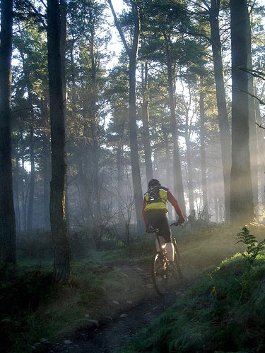 Where to Ride: Mountain Biking in Glentress, Scottis...