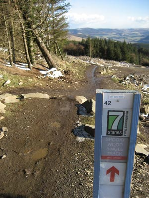 The Top of Glentress, 7 Stanes