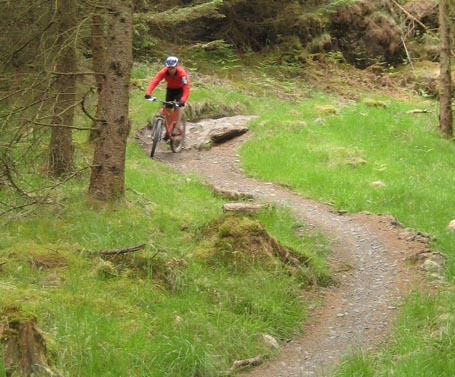 Some sublime Kirroughtree singletrack