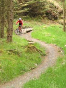 Newcastleton Mountain Bike Trail - The First Descent