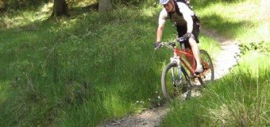 Some swooping trails at Newcastleton - 7 stanes mountain bike trail