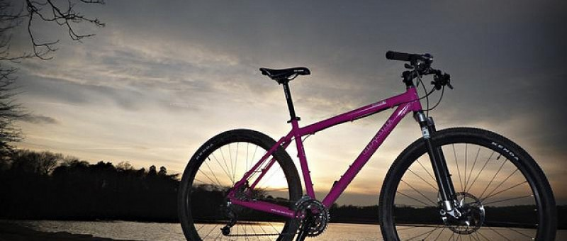 29 bikes: What are the disadvantages for mountain biking?