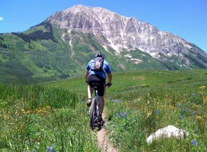 Buying Your First Mountain Bike, to hit trails like these