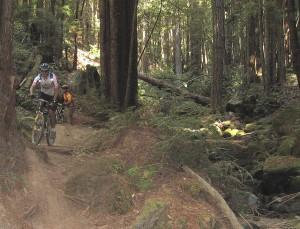 Manual Drop Off by Mountain Bike