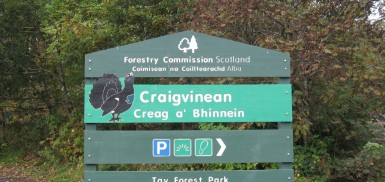 craigvinean forest trails