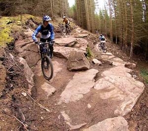 The Golspie highland wildcat trails at their best