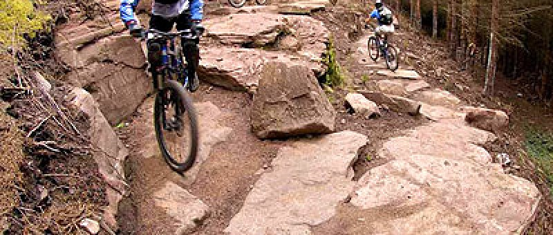 a golspie mountain biking cyclist, riding over rocks