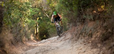 a rider on a flowing trail