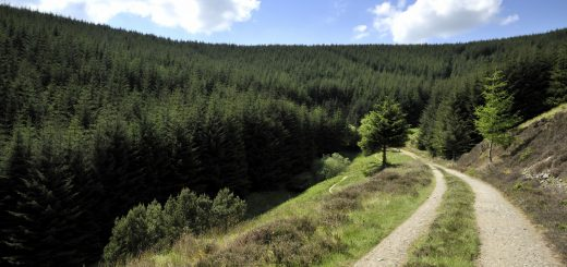 Best MTB Trails in Northern England and Scotland